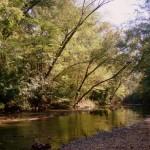 Hurricane Creek